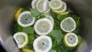 Kann Man Minze Einfrieren : melissen minze saft zum verd nnen rezept mit bild ~ Lizthompson.info Haus und Dekorationen