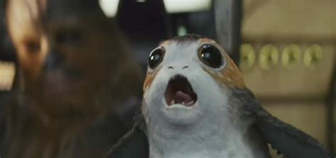 Porg Memes - porg memes the porg from the last jedi trailer is already a meme