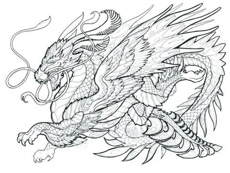 printable coloring pages  adults advanced dragons  getcoloringscom  printable