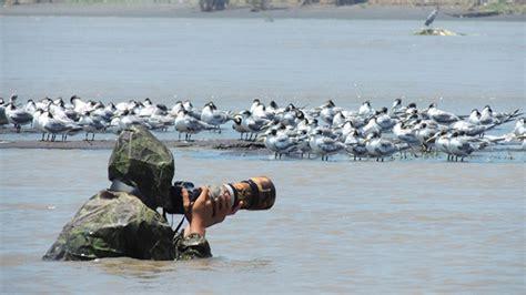 indonesia wildlife photography upayakan konservasi satwa
