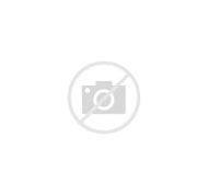 Pillow Décor - Hummingbirds Green Fre…