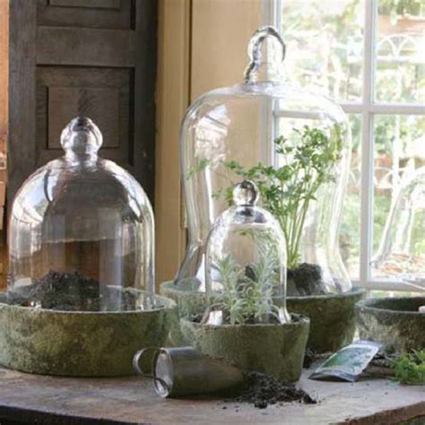 park hill collection glass bell jars sj1827