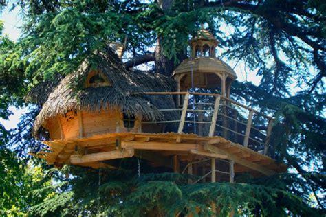 dormir dans une cabane dans les arbres sur un arbre perch 233