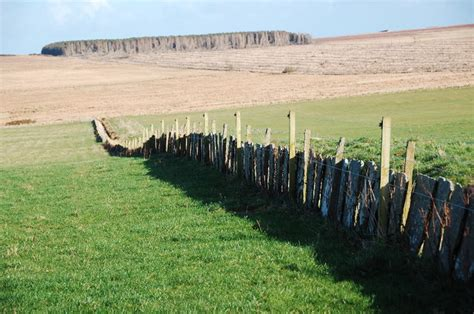 File Flagstone Wall Electric Fence Geograph