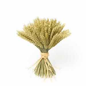 wheat sheaf by shropshire petals notonthehighstreet com