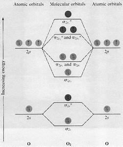 Molecular Orbital Diagram For F2
