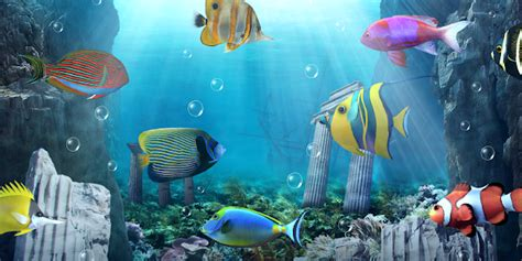 Animated Fish Aquarium Wallpaper Mobile - aquarium live wallpaper android apps on play