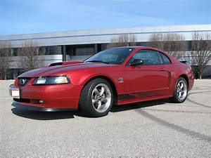 FOR SALE!!! 2003 MUSTANG GT 48,000 MI. - The Mustang Source - Ford Mustang Forums