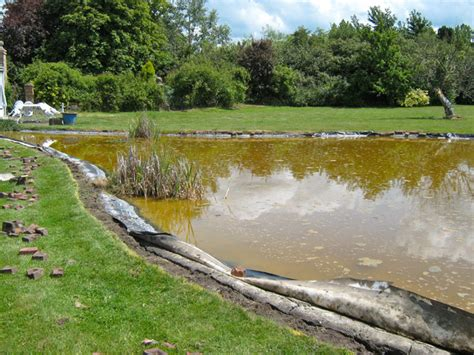 Clean Backyard Pond by Garden Pond Cleaning