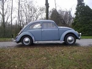 Concessionnaire Volkswagen 92 : volkswagen coccinelle classique de collection acheter ~ Maxctalentgroup.com Avis de Voitures