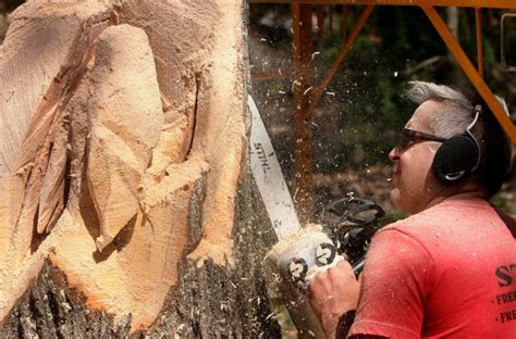 creative ideas  tree stumps lifestyles