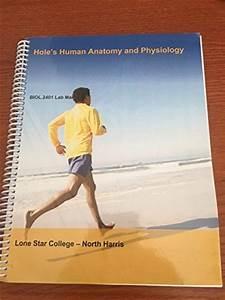 Lab Manual Ap1 - Holes Human Anatomy And Physiology