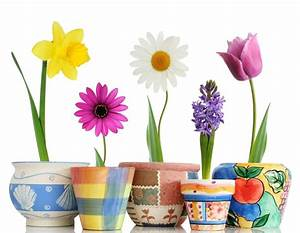 Ouvrir Un Pot De Peinture : diy id es comment personnaliser les pots de fleurs ~ Medecine-chirurgie-esthetiques.com Avis de Voitures
