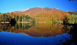 Best Places To Stay Near Biogradska Gora National Park
