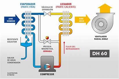 Dh Trotec Condensacion Deshumidificacion Secador Industrial