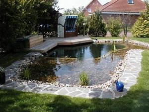 Karpfen Im Gartenteich : fische im gartenteich net tec magazine ~ Lizthompson.info Haus und Dekorationen