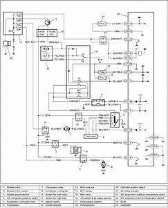 Wiring Diagram Ac Mobil Honda Freed