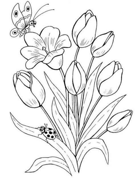 39 gambar sketsa bunga indah mawar melati