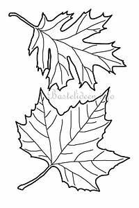 Blätter Basteln Herbst : basteln zum herbst bl tter vorlage ~ Lizthompson.info Haus und Dekorationen