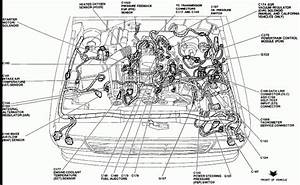 2004 Ford Ranger Wiring : 2004 ford ranger engine diagram automotive parts diagram ~ A.2002-acura-tl-radio.info Haus und Dekorationen