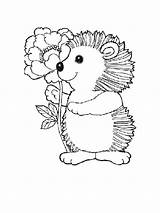 Hedgehog Coloring Pages Animals Printable Print Mycoloring sketch template