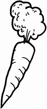 Carrot Coloring Pages Afro Hair Colouring Mr Place Print sketch template