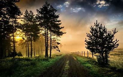 Road Trees Dirt Sky Country Wallpapers Background