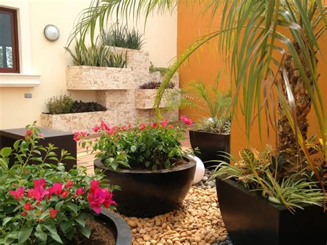¡ideas Económicas Para Tu Jardín