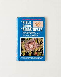 A Field Guide To Birds U0026 39  Nests