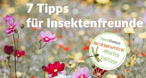 Was Tun Gegen Das Insektensterben? 7 Tipps Für