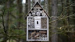 Insektenhotel Selber Bauen Anleitung : insektenhotel selber bauen bauanleitung und mehr sat 1 ratgebe ~ Michelbontemps.com Haus und Dekorationen