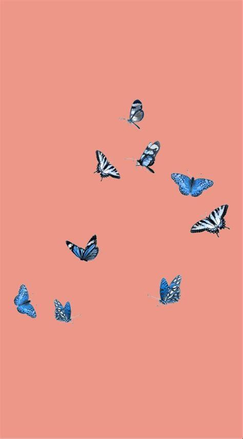 vsco wallpaper butterfly wallpaper iphone panda