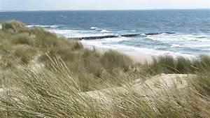 Bilder Meer Strand : a z meer meer natur planet wissen ~ Eleganceandgraceweddings.com Haus und Dekorationen