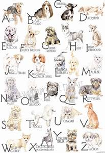ABC Dog Breed Alphabet Poster from Lauren Rogoff ...
