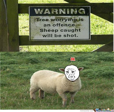 Sheep Memes - sheep by huey1 meme center