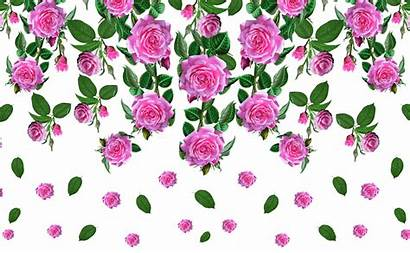 Pattern Flower Textile Rose Fabric Transparent Floral