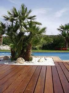 Palmen Für Draußen : gartendusche mit steinwand drau en mit gr nen palmen ~ Michelbontemps.com Haus und Dekorationen