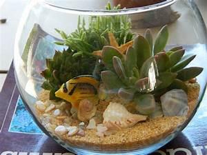 Die Besten Aquarien : die besten 25 aquarium terrarium ideen auf pinterest ~ Lizthompson.info Haus und Dekorationen