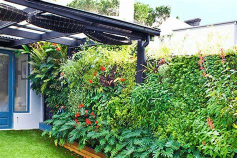 Vertical Wall Garden by Vertical Garden Kit Wall Gardens Mr Stacky Australia