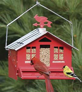 Duncraft: Bird Feeders Bird Houses Bird Seed Bird Baths