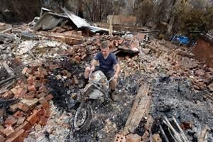 Paul Walker Burned Body - Bing images