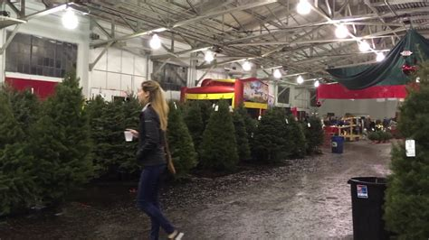 christmas tree lots in san franciso the guardsmen tree lot fort center san francisco california
