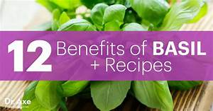 12 Benefits Of Basil   Recipes