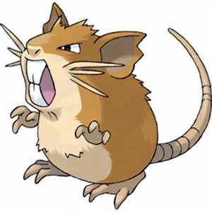 Raticate Pokémon