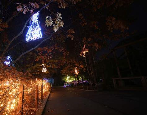 fort wayne zoo christmas lights christmas lights card