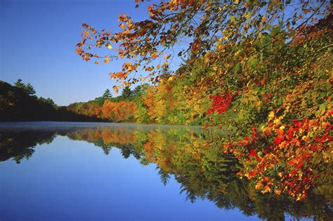 Desktop High Quality Fall Backgrounds by Fall Wallpapers High Quality Free