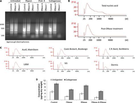 matrix bound nanovesicles  ecm bioscaffolds
