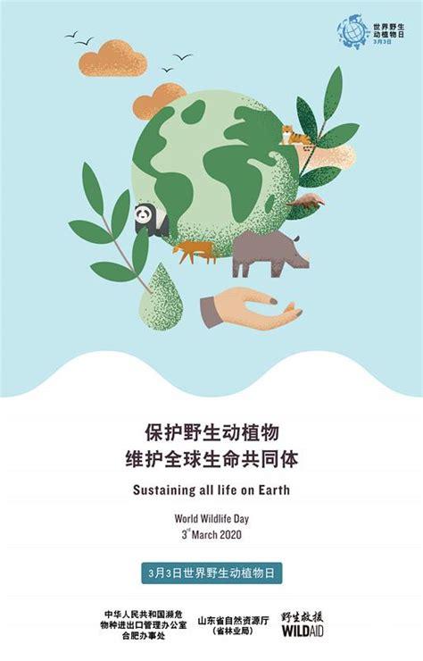 世界野生动植物日 拒食野味!让我们维护地球所有生命|世界|野生-社会资讯-川北在线