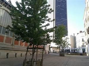 Vol Nantes Reunion : centre ville de nantes vol et vandalismes en r union ce week end ~ Maxctalentgroup.com Avis de Voitures