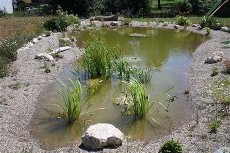 Miniteich Kleine Ruhe Oase Im Garten by Img 1199 Jpg